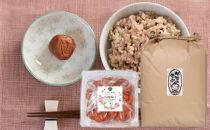 からだ蘇る熊野の玄米と有機梅干のセット