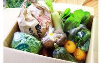 地元農家さんがつくる愛情たっぷりのお野菜とお米のセット