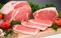 【黒毛和牛】びらとり和牛サーロインステーキ用180g×5枚