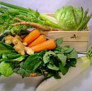 旬鮮雲仙野菜の詰め合わせ
