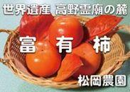太陽の光をたっぷり浴びた松岡農園の特選富有柿赤秀3L12個