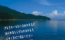 沖家室島の一本釣り漁師のお宿で旬の味覚に舌鼓(1名様分宿泊券)