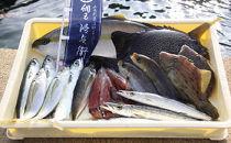 旬の鮮魚詰め合わせセット(小)