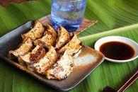 奄美島豚餃子食べ比べセット
