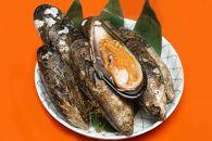 周防大島ならではのふるさとの味「瀬戸貝」7個