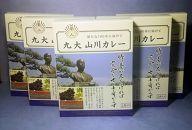 九州大学オリジナル 九大山川カレー