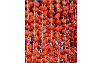 A014 紅干し柿