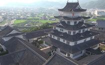 ■湯浅城 B会席(2名様ペア)1泊2食プラン