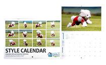 Bコース 飛行犬撮影カレンダーセット