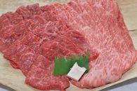 亀岡牛 肩ローススライス(400g)・モモ焼肉(400g)セット
