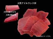 353-052-Cまぐろの魚二厳選天然特上本鮪中とろ赤身セット①