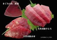 653-022-Cまぐろの魚二厳選天然特特上南鮪中トロブロック③