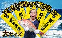 [朝廷献上品]<瀬戸内海産>天然鯛の浜焼き【大サイズ】