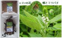 南魚沼市雲洞産エゴマ粉(パウダー)・エゴマ葉茶