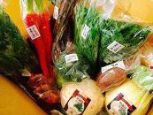 京のおせち特選 食材詰合せAコース