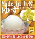 ゆずシャーベット6個/高知アイス/柚子/ユズ/おいしいんだもの/Madein土佐