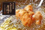 CV02<九州産>若鶏の唐揚げ