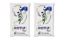 東西しらかわコシヒカリ精米(10kg)