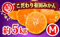 有田みかん 5kg(Mサイズ指定) 旬の味覚市場【こだわり】