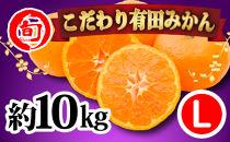 有田みかん たっぷり10kg(Lサイズ指定) 旬の味覚市場【こだわり】