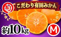 有田みかん たっぷり10kg(Mサイズ指定) 旬の味覚市場【こだわり】
