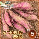 さつま芋「土佐紅」約5kg/S~Lサイズ/森田農園/日曜市農家8代目