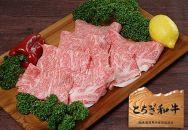 とちぎ和牛・前日光和牛(サーロインしゃぶ・しゃぶ用肉1㎏)