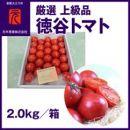 濃厚!徳谷トマト約2.0kg箱詰/生産者指定なし/厳選上級品/元木青果