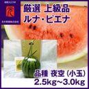 「ルナピエナ」冬のスイカ1玉(約2.5kg)夜空【小玉】元木青果