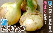 <限定>(中玉)柔らかくて甘い!「塩玉ねぎ(新玉ねぎ)」約3kg