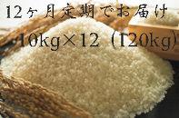 【頒布会】福岡県産ヒノヒカリ(2019年秋収穫のお米)10キロ×12回定期コース(全12回のお届け)