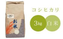 椿さんのおいしいお米(白米)3kg