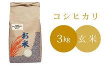 椿さんのおいしいお米(玄米)3kg