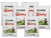 こうざきコシヒカリ(減農薬米)白米12kg玄米12kg