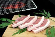 AP23-NT 山形県産豚ロースステーキ1kg