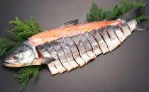 【数量限定】<網走産>特選一夜漬け甘塩鮭【2.5kg】