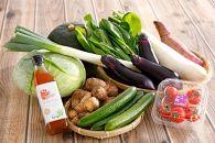 野菜セット+オリジナルつけだれ(1本)セット【K062SM-C】