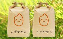令和元年産特別栽培近江米『みずかがみ』10kg(5kg×2)