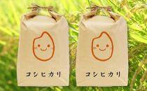 令和元年産特別栽培近江米『コシヒカリ』10kg(5kg×2)