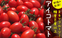 【完熟ミニトマト】アイコトマト_約1kg ※2020年1月より順次発送予定