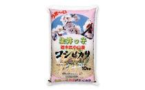 <2018年新米>小山コシヒカリ「生井っ子」【玄米10kg】
