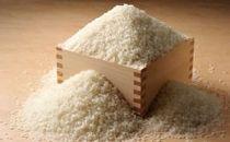 特別栽培米コシヒカリ 大洗日の出米3kg