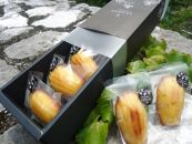 土佐山の柚子マドレーヌセット