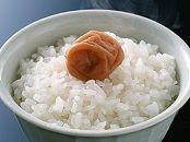 令和元年 宮城登米産「ひとめぼれ」減農薬米10kg