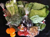 野菜果物詰め合わせセット(10種類程度)