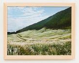 プロカメラマン撮影箱根の風景+箱根の間伐材フレーム(仙石原)