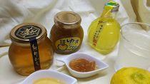 【数量限定】【クレジット限定】柚子と日本ミツバチの蜂蜜の古座川柚子ハニーセット