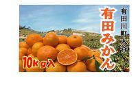 有田みかん〈滝秀園〉10kg
