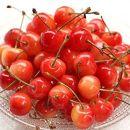 先行予約/さくらんぼ日和赤い宝石の愛しい果実さくらんぼ/佐藤錦(500g箱/バラ)