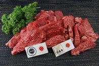 【牧場直売店】神戸ビーフ・但馬牛 厚切りヘレセット  焼肉 500g